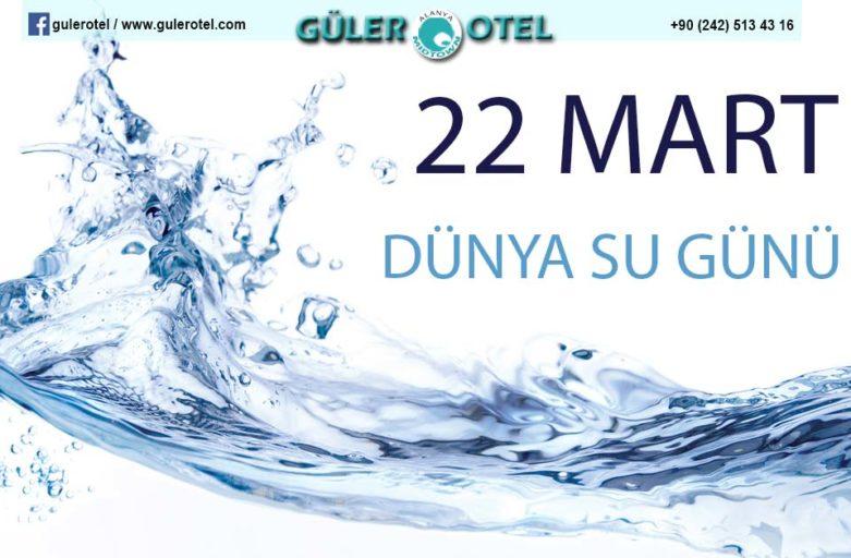 22 Mart Dünya Su Günü ve Su Sorunu üzerine